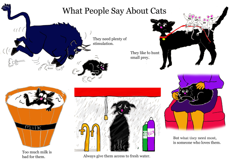 1. What people say about Cats.png