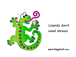 6. Canvas - Lizards dont need straws