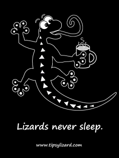 7. T-shirt - lizards never sleep on black - with coffee