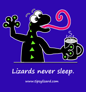 8. T-shirt - lizards never sleep on blue