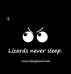 9. T-shirt - lizards never sleep - Eyeballs