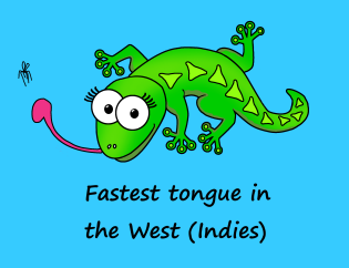 Fastest tongue - GIRL - Blue background