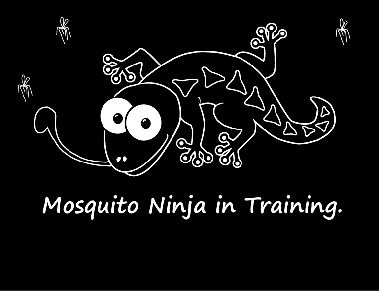 Mosquito ninja with black background.png