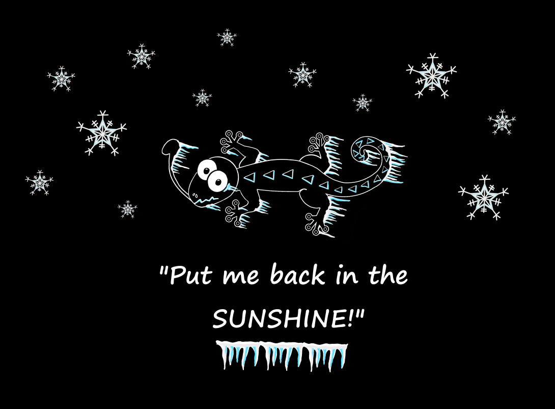 WS Adult -put me back in the sunshine black background.png